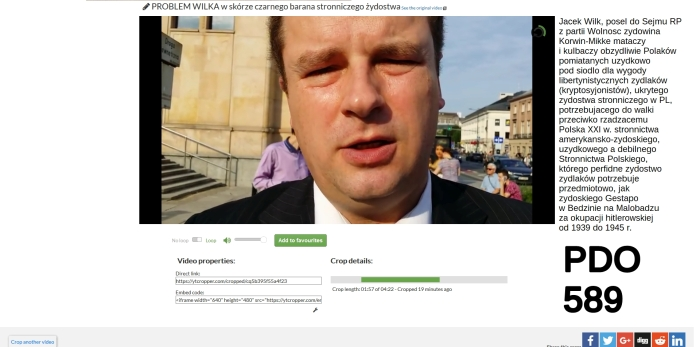 pdo589 opis Screenshot_2018-07-02 ytCropper Jacek Wilk o nowelizacji ustawy o IPN