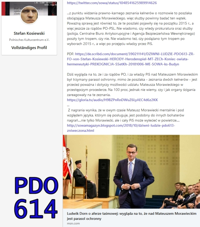pdo614 morawiecki dorn Screenshot_2018-10-06 (9) LinkedIn