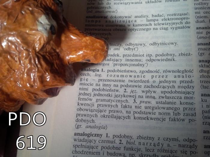 pdo619 analogia IMG_20181024_130932