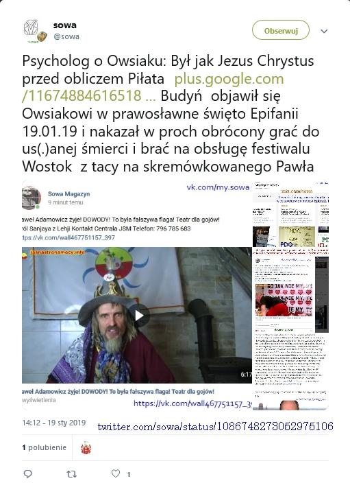 psycholog o owsiaku screenshot_2019-01-20 sowa on twitter