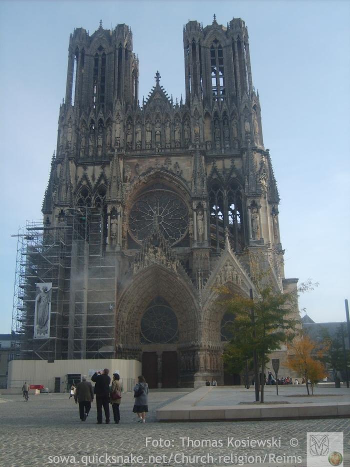 Reims sowa