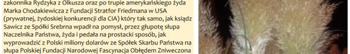 Screenshot_2019-09-20 sieroty wdowy PAPIRUS DEVYATOVA M25 w aspekcie skremowania lista 2 PDO656 PDO666 SSetKh von Stefan Ko[...]