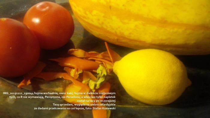 IMG_20191211_190044 hujma wschodnia, owoc kaki, Lechowi Klekotowi z przyjaźnią