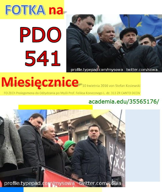 pdo541+majdan+kaczynski