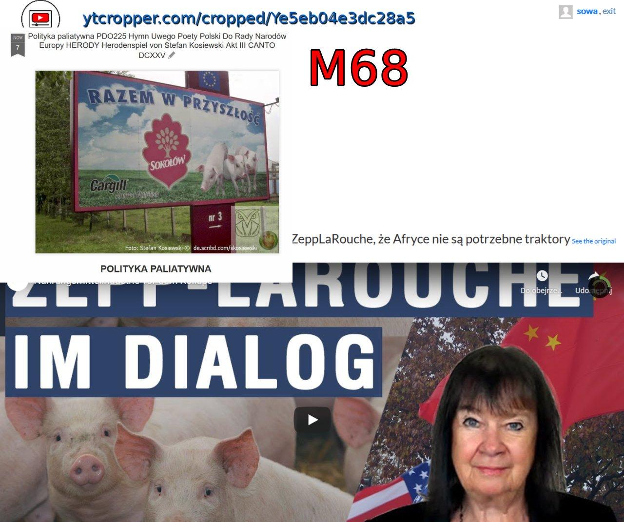 Screenshot_2020-05-04 ytCropper Nahrungsmittelindustrie vor dem Kollaps